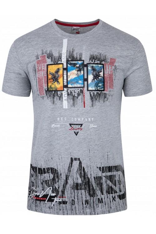Koszulka męska - Tshirt - Brand DX - szara